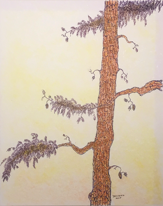 Pine Tree Artwork